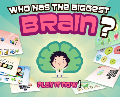 How has the biggest Brain?